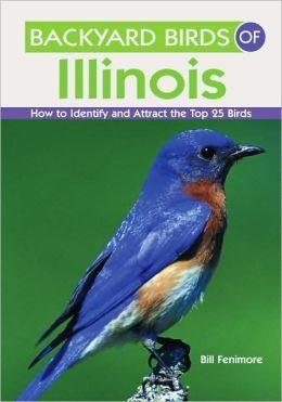 Backyard Birds Of Illinois How To Identify And Attract The Top 25 Birds Backyard Birds Birds Backyard