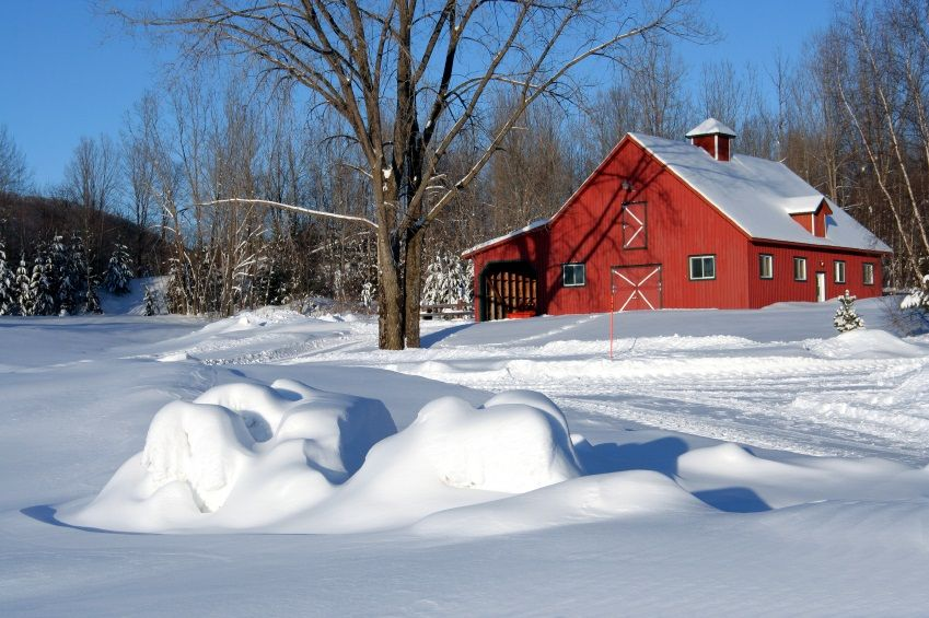 27 Must-Do Winter Preparation Chores For Your Homestead