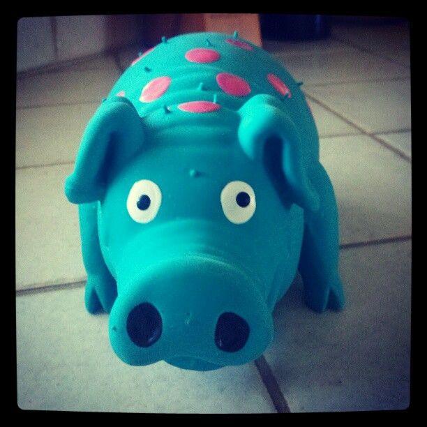 Mr Pigglesworth - their favorite toy :)