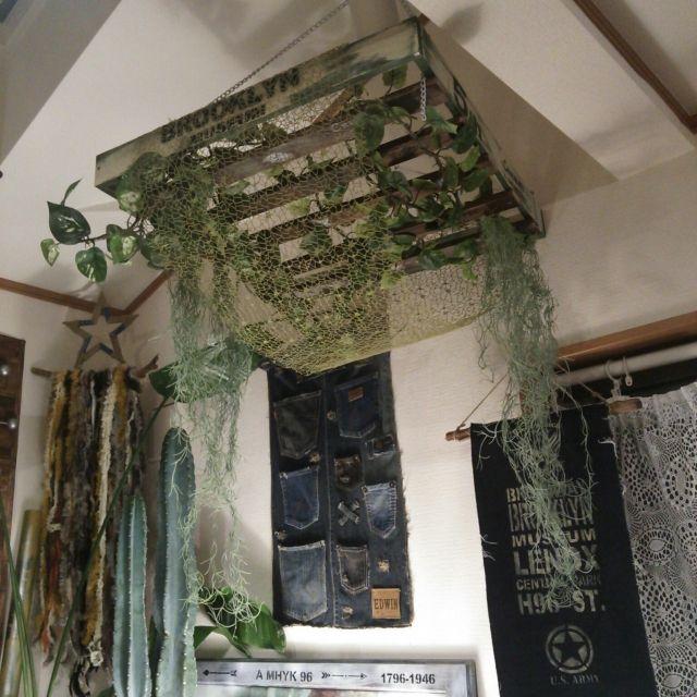 壁 天井 ニトリのフェイクグリーン 安すぎる のインテリア実例 2017