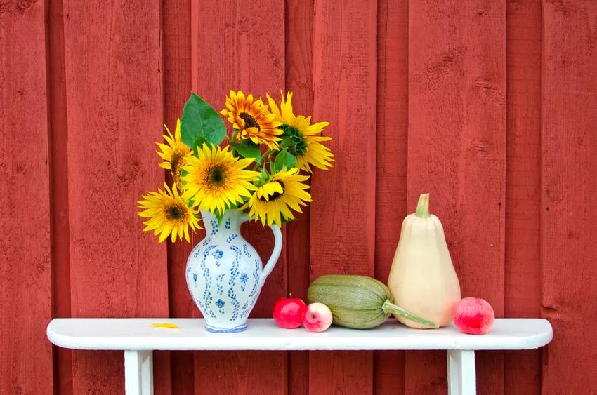 Wie Mohn Und Sonnenblumen Langer In Der Vase Halten Turkischer Mohn Sonnenblumen Pfingstrosen