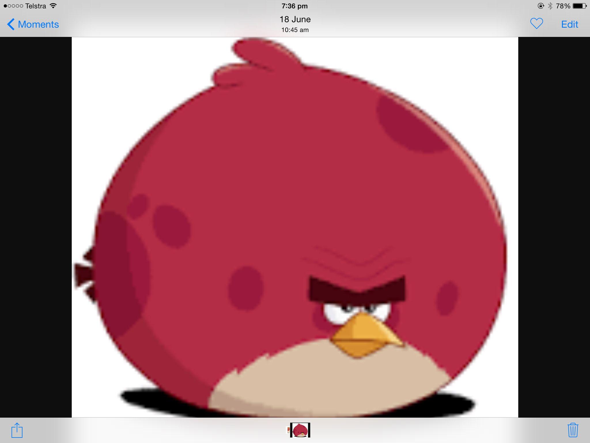 Terence | Halloween creep out | Angry birds shirt, Angry