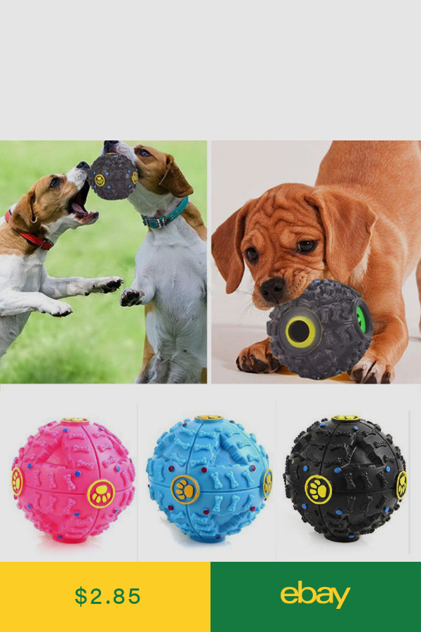 Toys Pet Supplies Ebay With Images Dog Toys Dog Sounds Pet Dogs