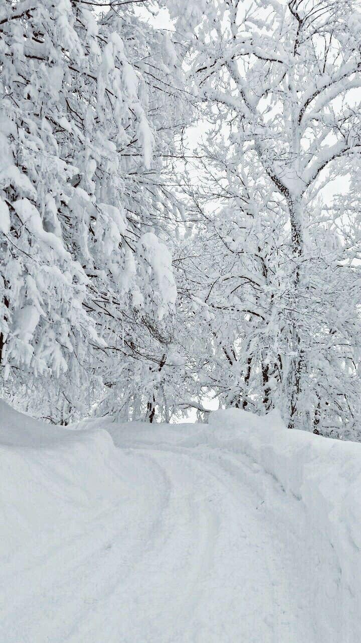 Winter  #landscapepics