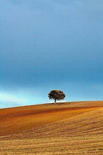 Alentejo Portugal In 2020 Landscape Photos Beautiful