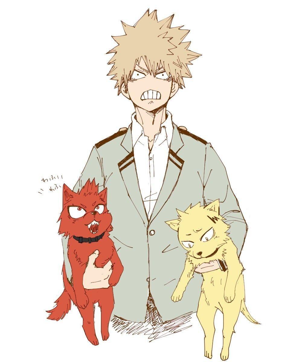 Bakugou Katsuki Dog Kirishima Eijirou Dog Kaminari Denki Boku No Hero Academia Hero My Hero Academia Memes