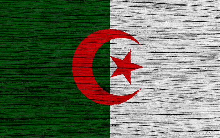 Download Wallpapers Flag Of Algeria 4k Africa Wooden Texture Algerian Flag National Symbols Algeria Flag Art Algeria Besthqwallpapers Com Algeria Flag Algerian Flag Flag