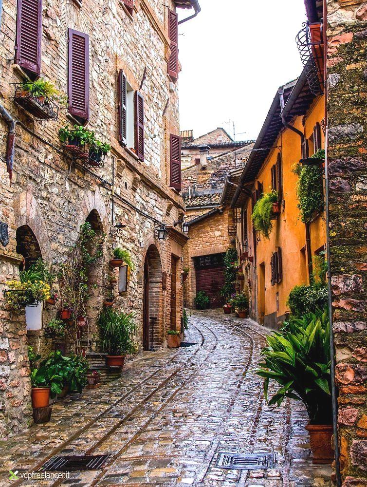 living in monza italy #livinginitaly   Italy, Beautiful ...