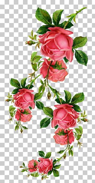 Flores Rojas Flor De Papel Rosa Png Clipart Flower Png Images Flower Illustration Digital Flowers