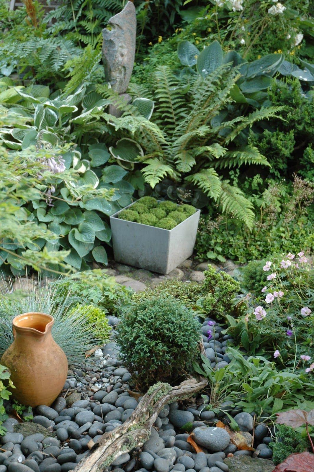 HAVETID: Inde i haven.