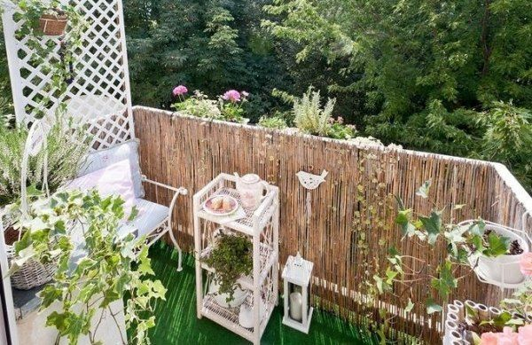 DIY Balcony privacy protection ideas lattice ivy wooden