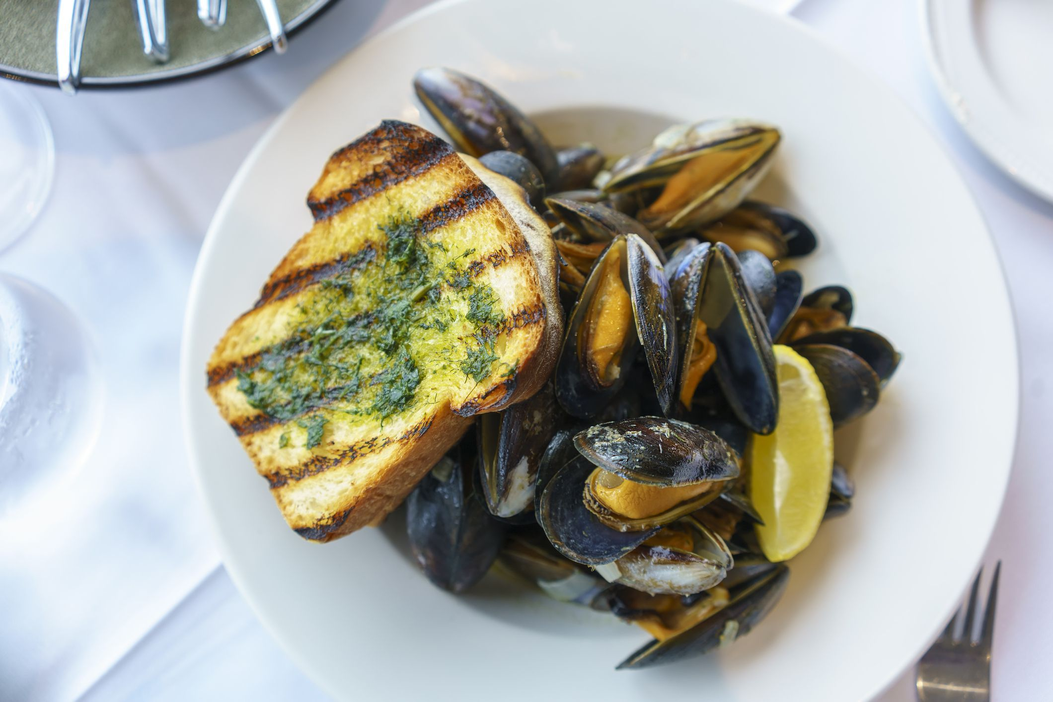 Steamed Mussels In Thai Basil Coconut Sauce Recipe Steamed Mussels Coconut Sauce Mussels Recipe