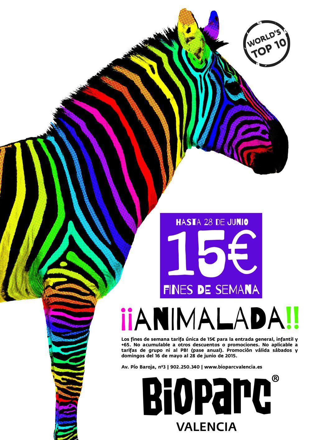 ¡¡ ANIMALADA !! Disfruta Bioparc Valencia por sólo 15€ los fines de semana hasta el 28 de junio. Más información: www.bioparcvalencia.es