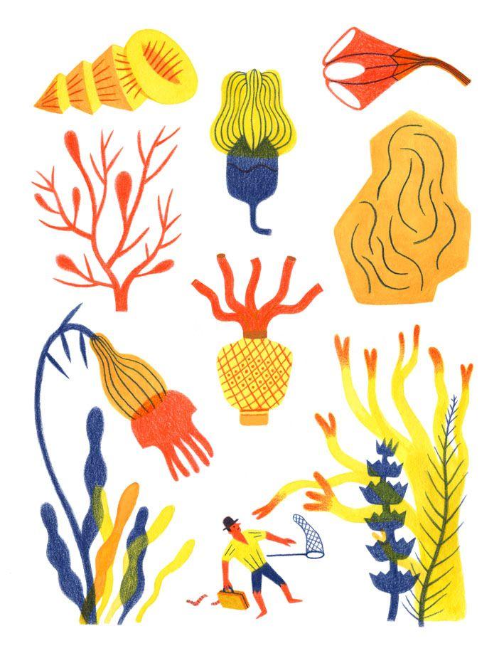 Plus Grand Anne Laval Art Et Illustration Linogravure Et