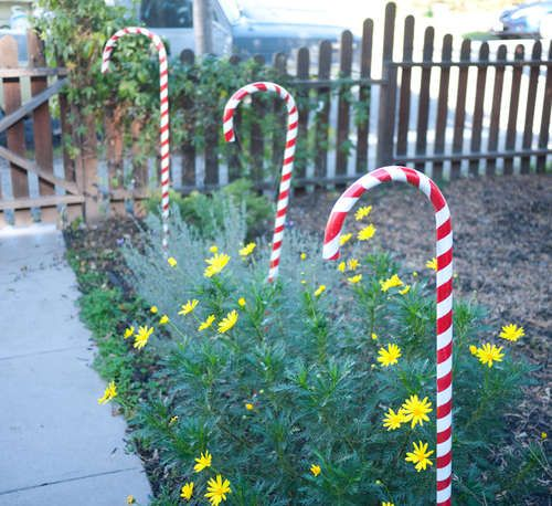 """These candy canes are made of standard 3/4"""" PVC pipe. If you want, you can opt for the 1"""" PVC or, with ore work, something even bigger.    In the picture are the PVC pipes cut to 5' lengths. Easily done by cutting the standard 10' length in half with a saw. Bring a saw to the hardware store and you can easily cut these down to size in the parking lot for easier transport."""