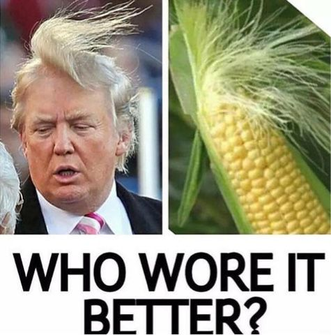 Still The Best Medicine Trump Vs Corn Who Wore It Better Humor Funny Photos Funny Pictures