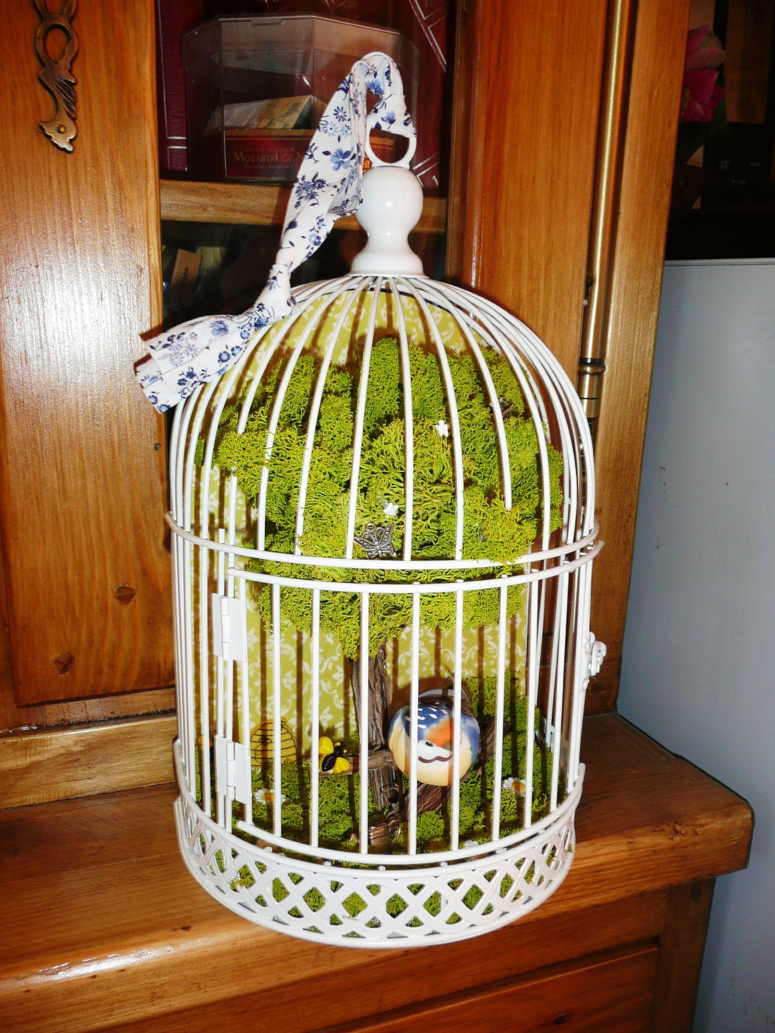 Cage de Pioupiou