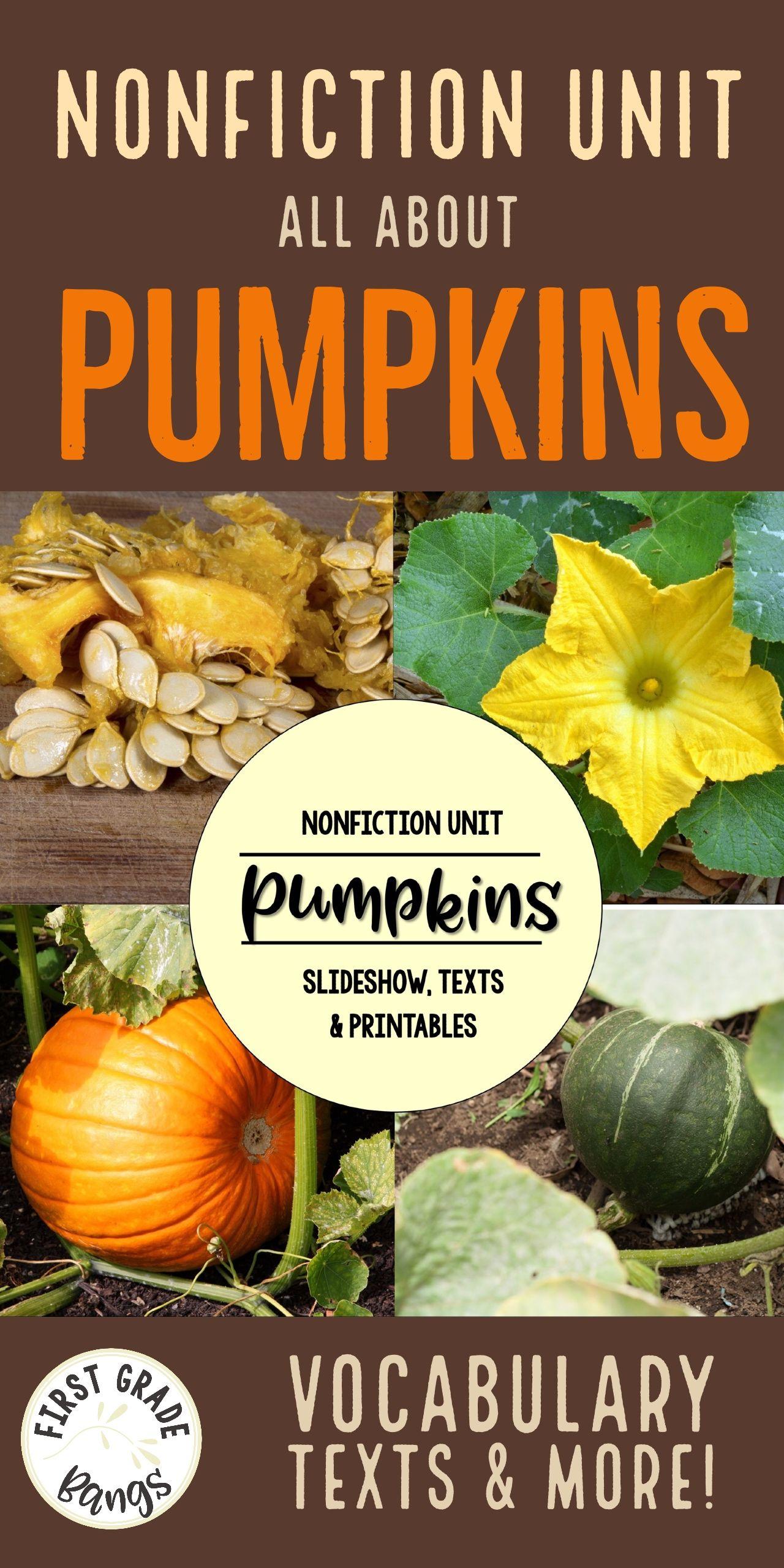 Pumpkins Nonfiction Close Reading Amp Visual Vocabulary Unit