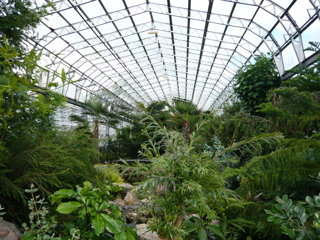 the moderate greenhouse in the david welch winter garden parco