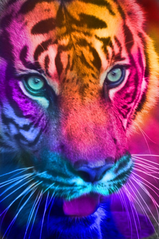 On Pinterest Iphone Backgrounds Good Vibes And Trippy Designs Animals Tiger Pictures Big Cats Art