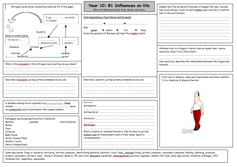 Last of 6 great B1 revision worksheets by @Rachel R Matthews ...