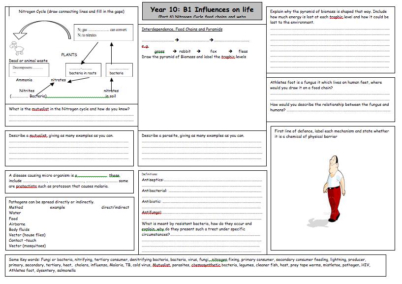 Last Of 6 Great B1 Revision Worksheets By Rachel R Matthews