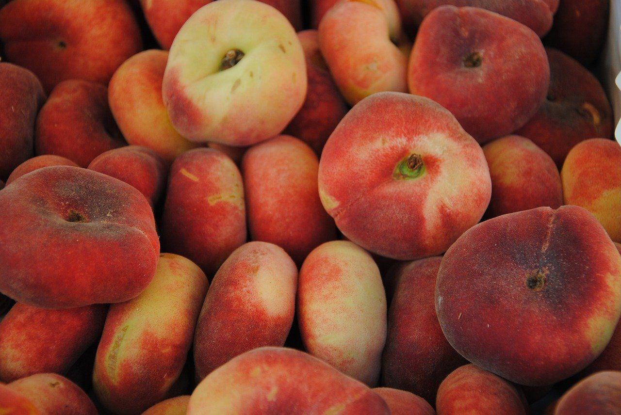 فوائد فاكهة كعب الغزال فائدة الخوخ الدراق موسوعة Peach Fruit Food
