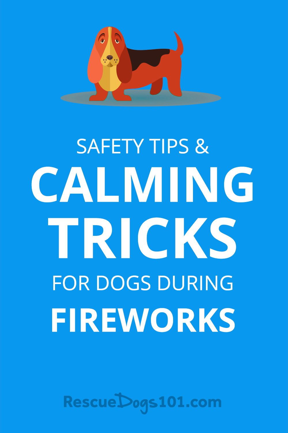 My Dog is Afraid of Fireworks... 9 Safety Tips and Calming