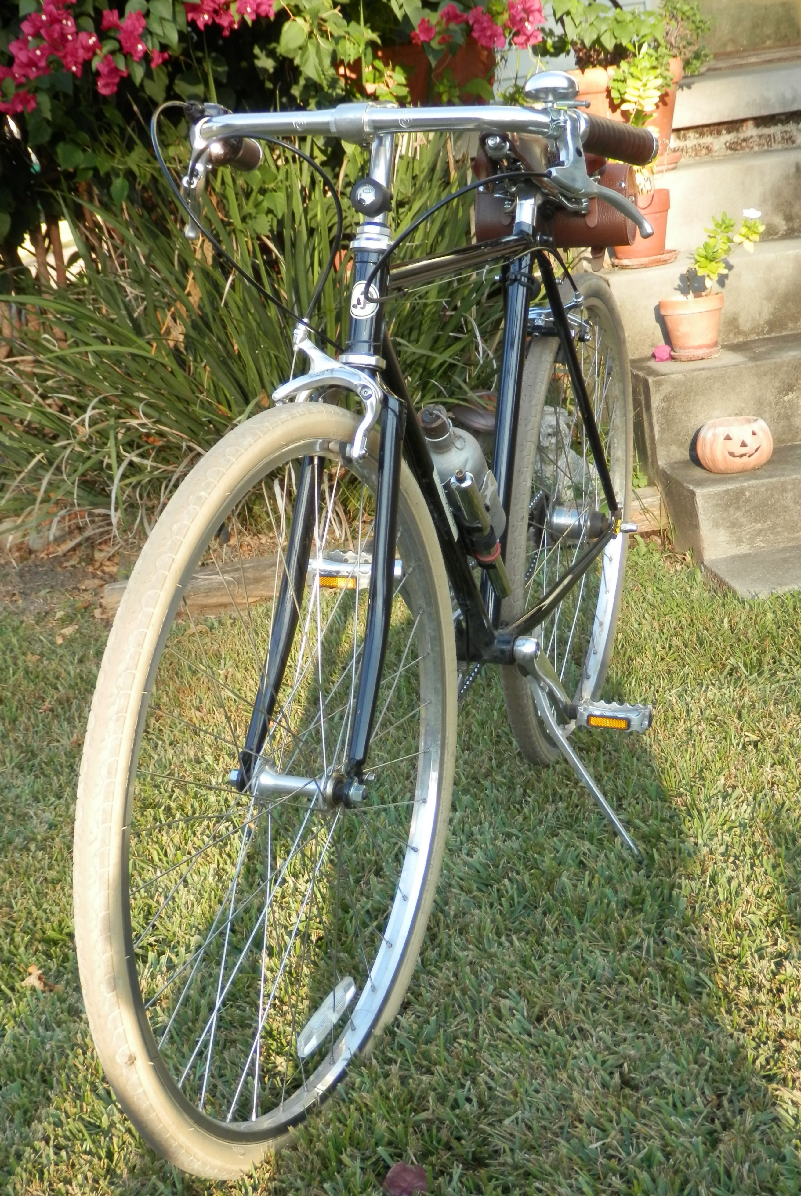 My Papillionaire Path Racer with vintage French water bottle, and ...