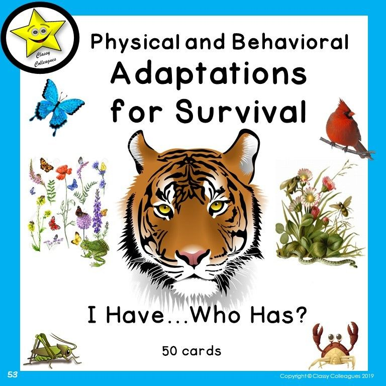 15++ Physical adaptations of animals images