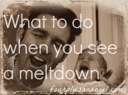 meltdownpic