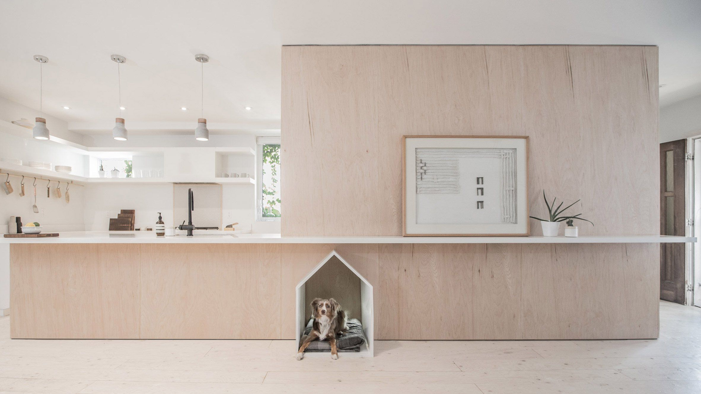 B und q küchendesign studioac inserts plywood unit complete with dog bed into toronto