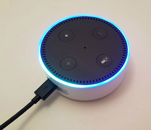 Amazon's Echo Dot is selling like hotcakes and was my favorite Christmas present! Here's…