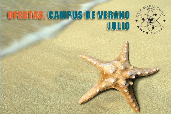 Campus de verano II