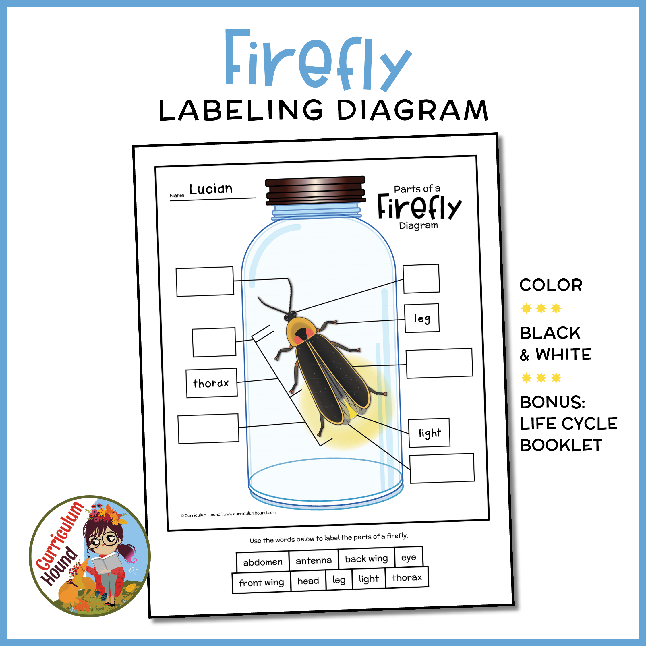 Label A Firefly Diagram