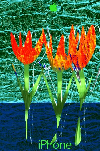 iPhone_tres_tulipans by s.g.b.roberts