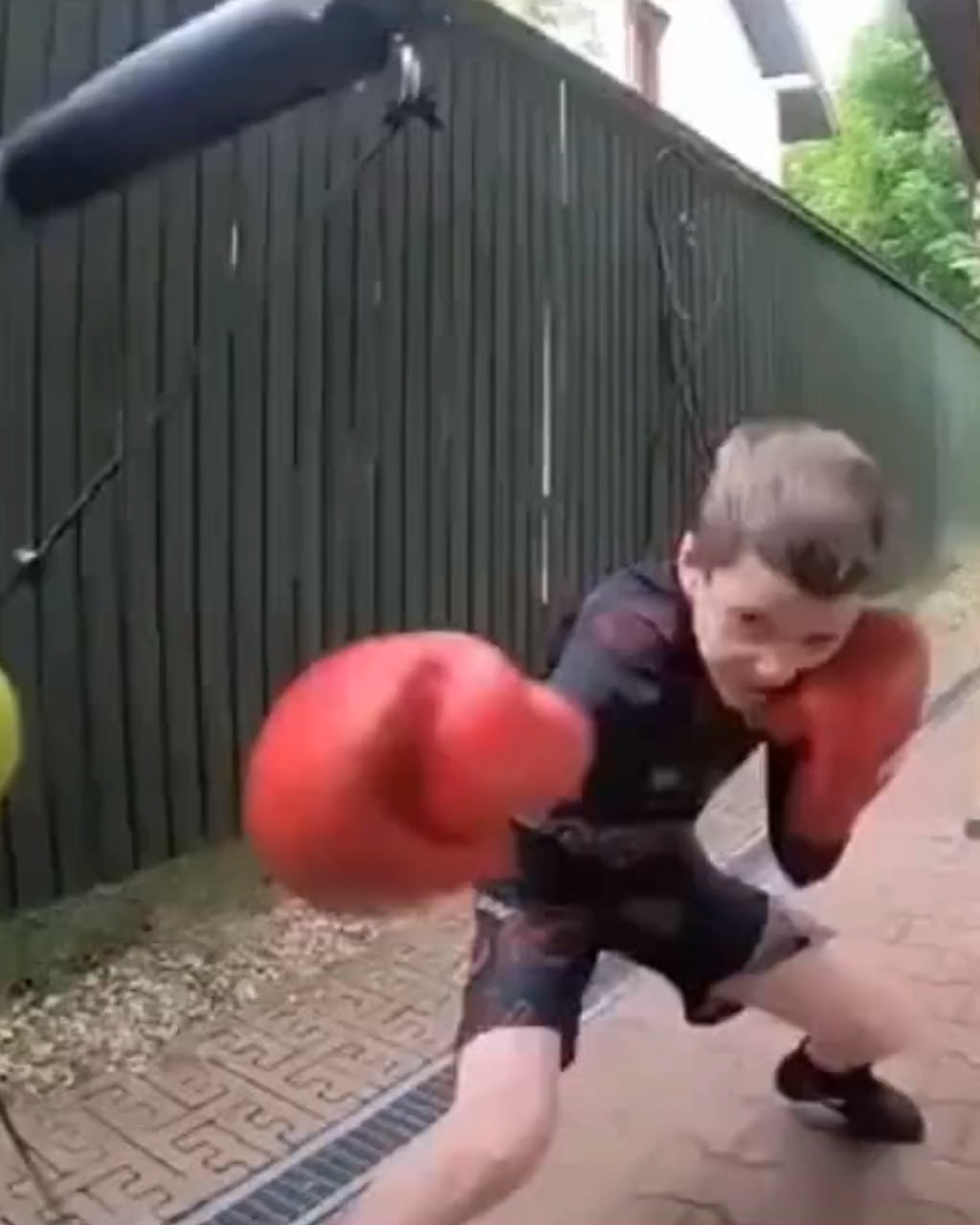 I Will Not Bully Others, and I Will Not Be Bullied! Wall Mounted Response Boxing Training.