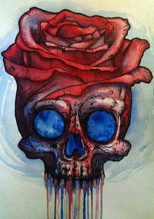 color skull and roses drawing
