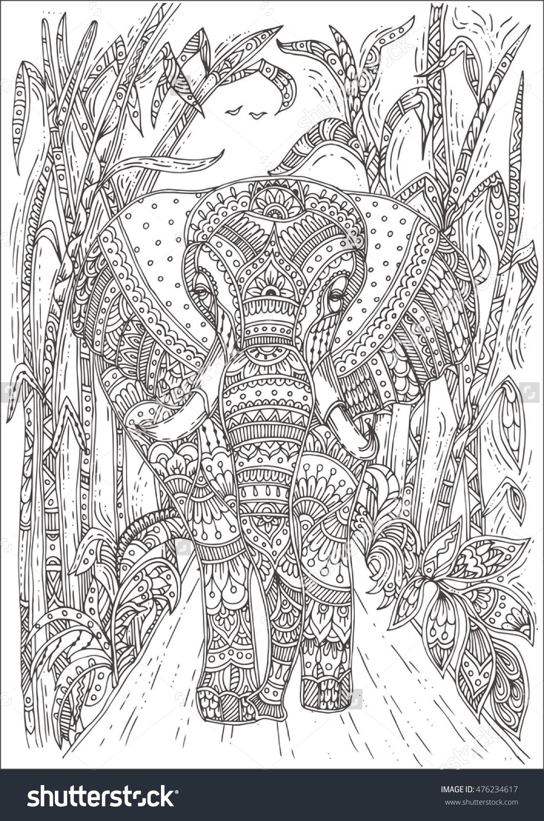 Hand Drawn Elephant With Ethnic Floral Doodle Pattern Coloring Page