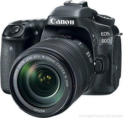 Canon Eos 80d Review Canon Camera Dslr Photography Tips Cannon Camera