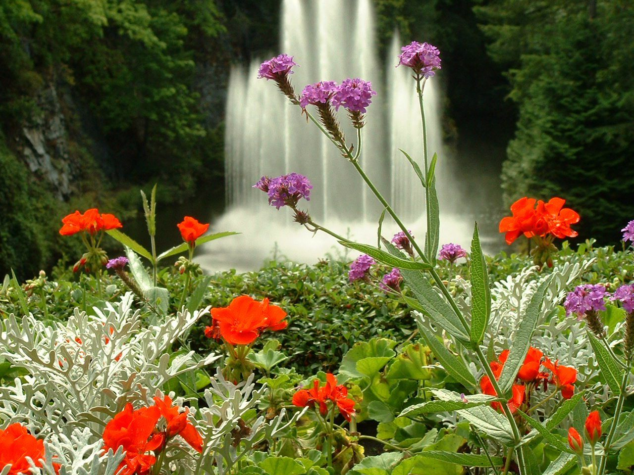 Imagenes del as cascadas del jardin butchart imagenes - Jardines con rosas ...