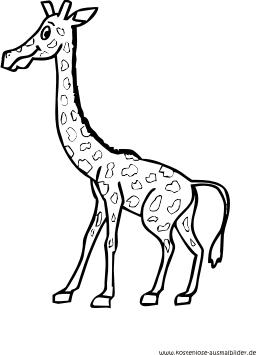 Ausmalbild Giraffe In 2020 Ausmalbilder Tiere Ausmalen Giraffe
