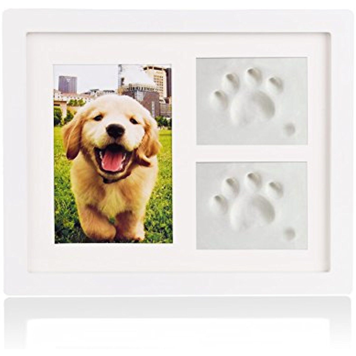 9f6e640f7603 Petacc Pet Memorial Picture Frame Pet Paw Print Photo Frame Kit Pet  Keepsakes Kit for Cats and Dogs, with Clays, for Room Wall or Table Decor  (white) ...