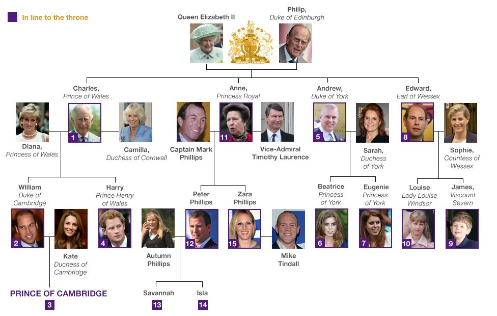 Royal family tree and line of succession for Stammbaum basteln mit kindern