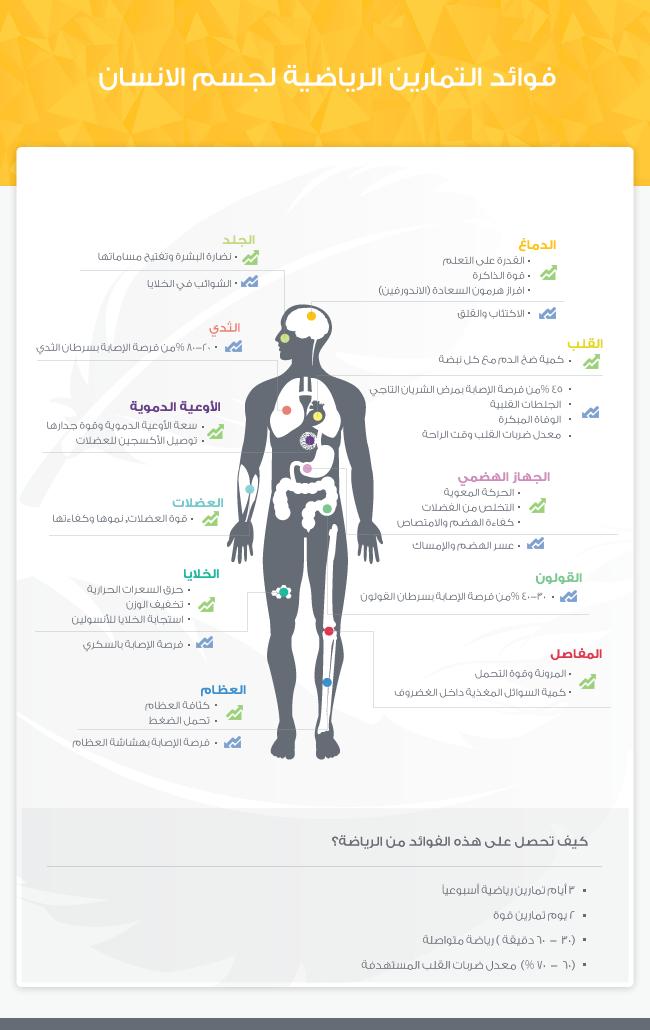 انفوجرافيك فوائد ممارسة الرياضة لجسم الإنسان Fitness Articles Bodybuilding Fitness