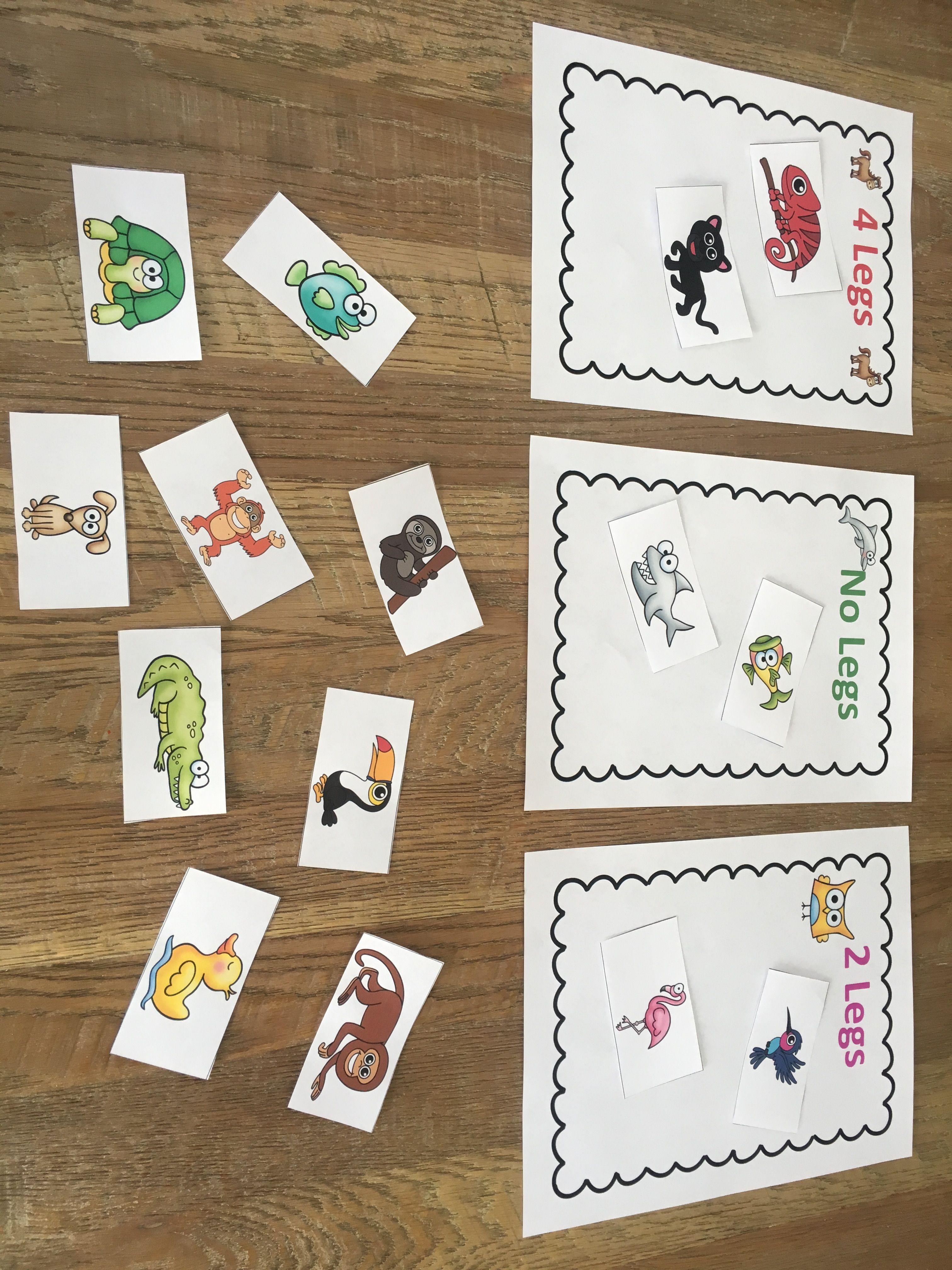 Animal classification sorting activity. | Animal classification,  Kindergarten sorting activities, Animal classification activity