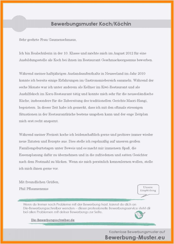 Lebenslauf Vorlagen Praktikum Schüler Resume examples