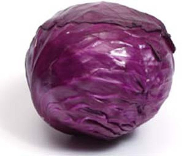 Make Your Own Organic Natural Purple Fabric Dyes