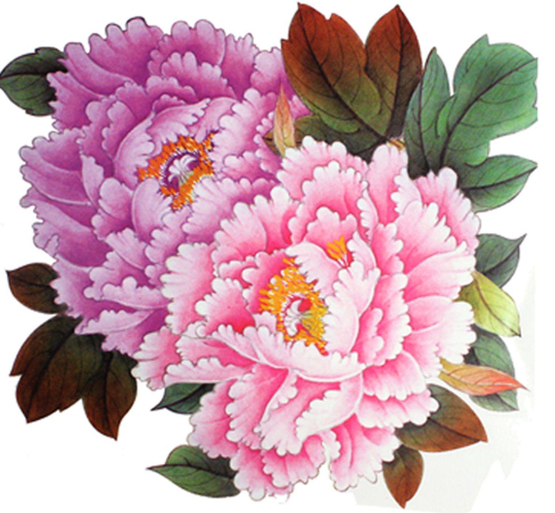 Extra Large Taille Rose Pivoine Tatouages De Fleurs 8 66 X8 07