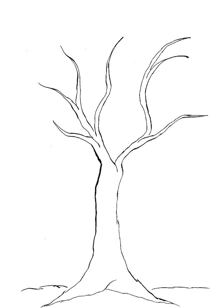 bare tree coloring page template